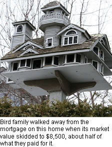 luxury birdhouse