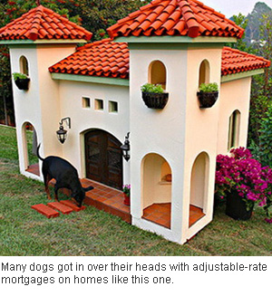 luxury doghouse