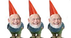 3 zell gnomes