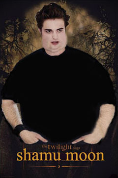 New Moon sequel